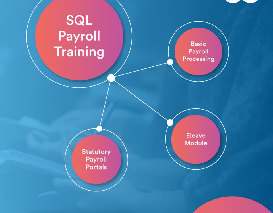 sql accounting software training progress